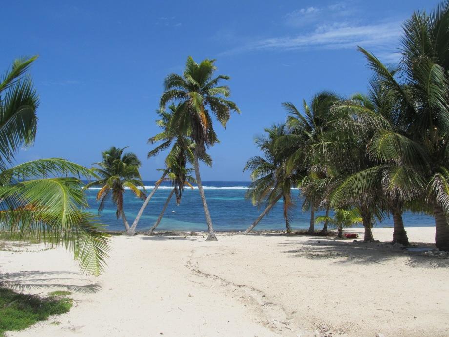 Cayman 2013
