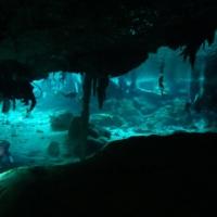 Dos Ojos & The Yucatan Cenotes